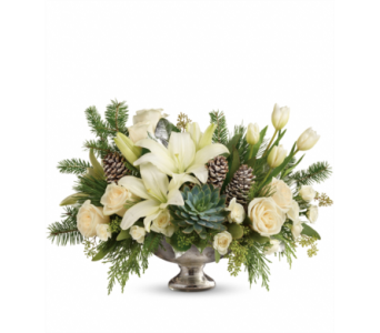 Teleflora's Winter Wilds Centerpiece  in Detroit and St. Clair Shores MI, Conner Park Florist