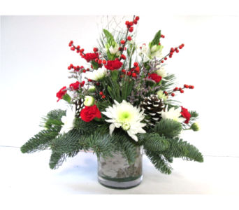 Holiday Giving Centerpiece in Worcester MA, Holmes Shusas Florists, Inc