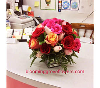 BGF1134 in Buffalo Grove IL, Blooming Grove Flowers & Gifts