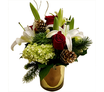 Comfort & Joy in Fort Worth TX, TCU Florist