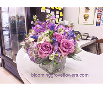 BGF2379 in Buffalo Grove IL, Blooming Grove Flowers & Gifts