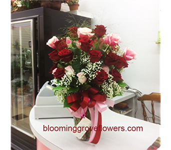 BGF3366 in Buffalo Grove IL, Blooming Grove Flowers & Gifts