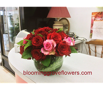 BGF3514 in Buffalo Grove IL, Blooming Grove Flowers & Gifts