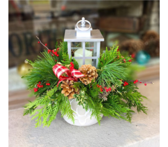 Festive Lantern Arrangement in Aurora ON, Caruso & Company