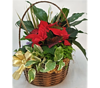 Bern's Planted Basket in Alliston, New Tecumseth ON, Bern's Flowers & Gifts