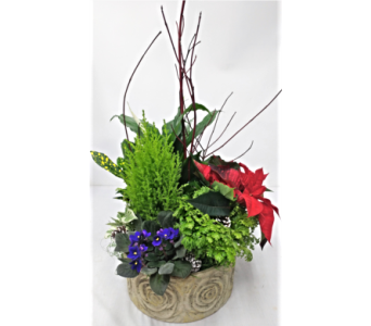 Planter in Ceramic container in Alliston, New Tecumseth ON, Bern's Flowers & Gifts