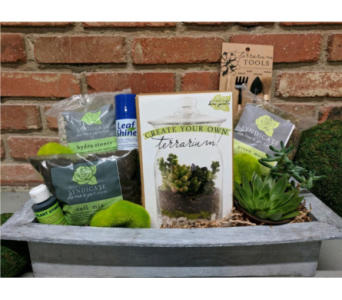 The Ultimate Terrarium Gift Box in Casper WY, Keefe's Flowers
