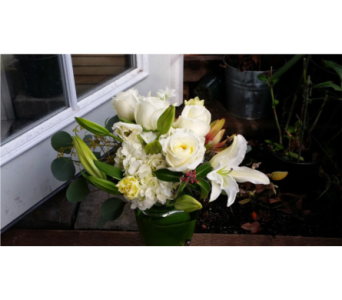 Happy winter in Orinda CA, Misaghi Design Orinda Florist