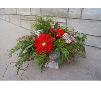 Home For The Holidays in Muskegon MI, Wasserman's Flower Shop