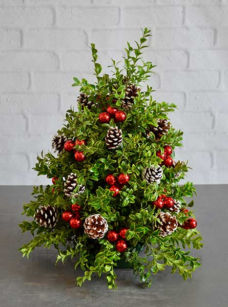Holiday Boxwood Tree in Scranton PA, Remick Floral & Gift