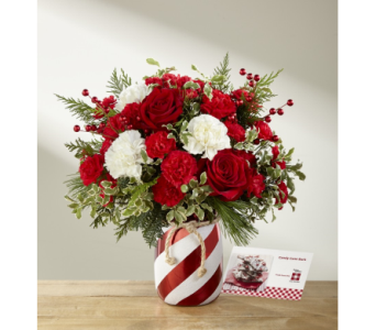 Holiday Wishes Bouquet in Camp Hill and Harrisburg PA, Pealers Flowers