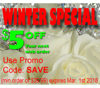 Winter Special  in Campbell CA, Citti's Florists