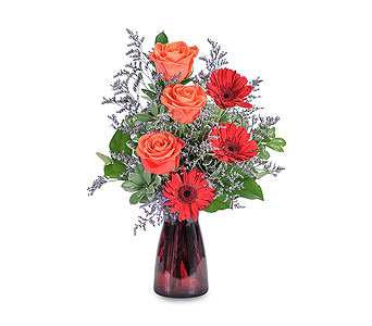 Scarlet Crush in Mount Morris MI, June's Floral Company & Fruit Bouquets