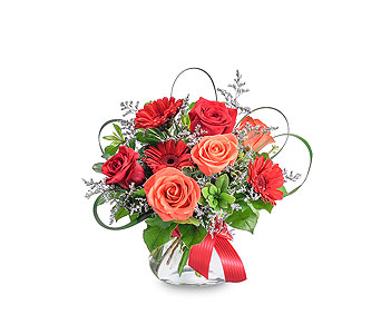 Scarlet Flame in Huntington IN, Town & Country Flowers & Gifts