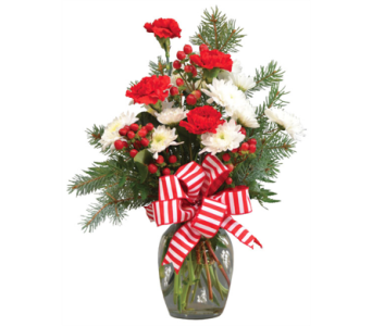Candy Cane Peppermint vase in Depew NY, Elaine's Flower Shoppe