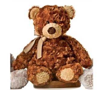 Puddin' Bear - Brown in Alliston, New Tecumseth ON, Bern's Flowers & Gifts