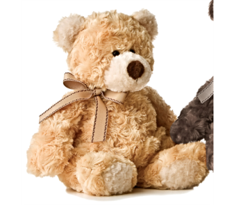 Puddin' Bear - Beige in Alliston, New Tecumseth ON, Bern's Flowers & Gifts