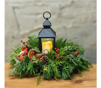 Woodland Meadow Lantern in Aurora ON, Caruso & Company
