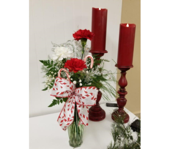 Candy Cane Budvase in Alexandria MN, Anderson Florist & Greenhouse