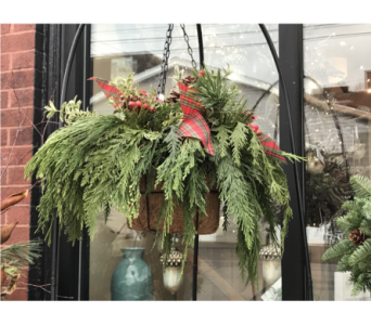 Hanging Basket of Pine in Ellwood City PA, Posies By Patti