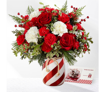 Holiday Wishes in Owensboro KY, Welborn's Floral Company
