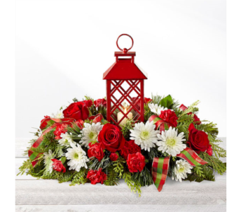 Celebrate The Season in Owensboro KY, Welborn's Floral Company