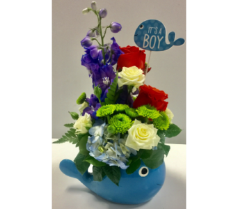 It's a Boy! in Northfield MN, Forget-Me-Not Florist