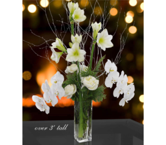 Winter Lilies and Orchids by Hoogasian Flowers in San Francisco CA, Hoogasian Flowers