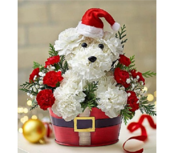 Santa Paws in Palm Desert CA, Milan's Flowers & Gifts