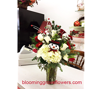 BGF0983 in Buffalo Grove IL, Blooming Grove Flowers & Gifts