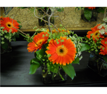 Orange Gerbera in Twin Falls ID, Canyon Floral
