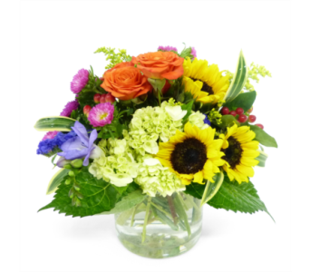 Radiant by Bell Flowers in Silver Spring MD, Bell Flowers, Inc
