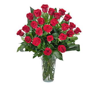 Grand Roses - 2 Dozen Roses in Worcester MA, Perro's Flowers