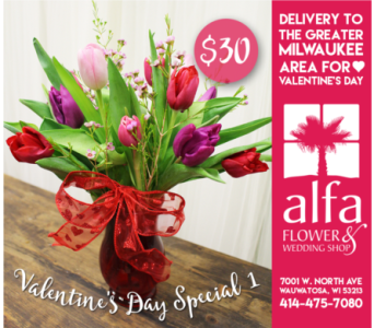Valentine's Day Special 1 in Milwaukee WI, Alfa Flower Shop
