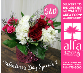 Valentine's Day Special 2 in Milwaukee WI, Alfa Flower Shop