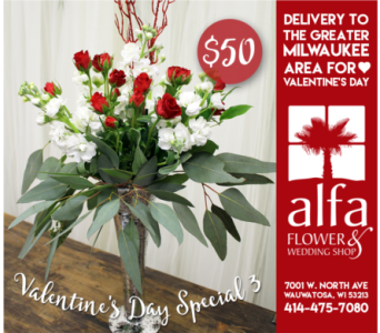 Valentine's Day Special 3 in Milwaukee WI, Alfa Flower Shop