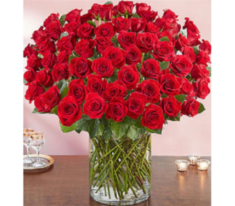 100 Red roses in Allentown PA, Ashley's Florist