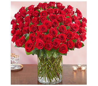 100 ROSES in Aston PA, Minutella's Florist