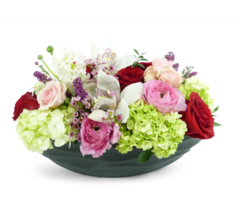 Lush by Bell Flowers in Silver Spring MD, Bell Flowers, Inc