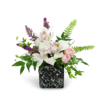 Orchid Garden by Bell Flowers in Silver Spring MD, Bell Flowers, Inc
