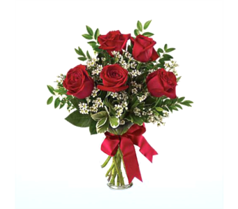 Six Red Roses in Columbia TN, Douglas White Florists