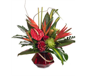 Exotic Blooms in St. Louis MO, Walter Knoll Florist
