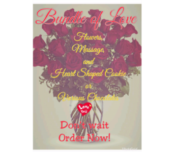 Bundle of Love in Perkasie PA, Perkasie Florist