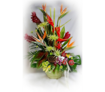 Large WOW Tropical in Naples FL, Naples Flowers, Inc.