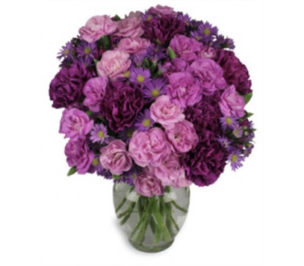 Purple Passion in Oviedo FL, Oviedo Florist