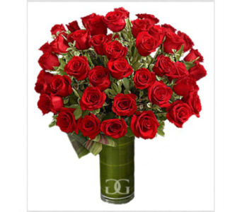 Red Rose Arrangement-Large in Washington DC, Greenworks