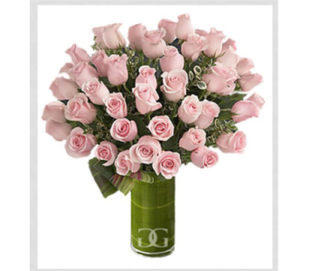 Pink Rose Arrangement-Large in Washington DC, Greenworks