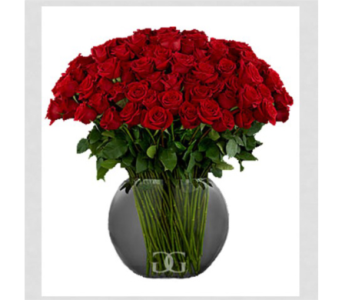 Red Rose Bowl Arrangement-Large in Washington DC, Greenworks