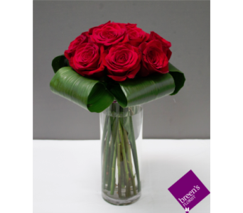 Princess Roses - 1 Dozen Red in Houston TX, Breen's Clear Lake Flowers