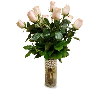 One Dozen Pink Roses in Fort Worth TX, TCU Florist